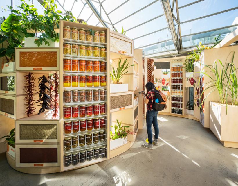 Sweet Addiction: A botanical adventure through chocolate